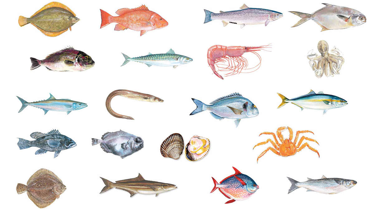 Which Fish Have Parasites